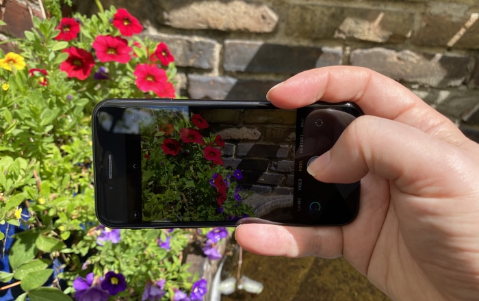 iPhone SE 2020 Test: Kamera-Aufnahme im Querformat