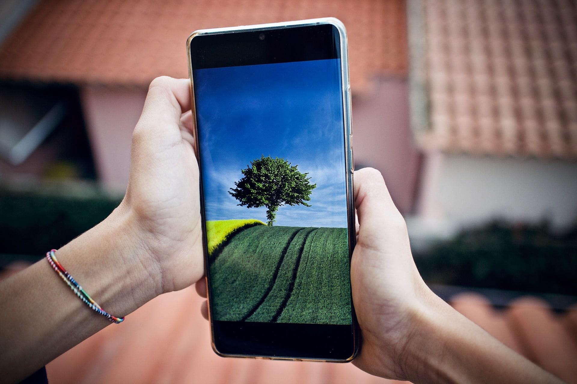 Smartphone in zwei Händen mit Feld und Baum