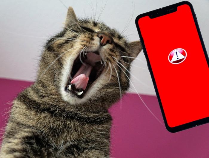 App Abstürze Android