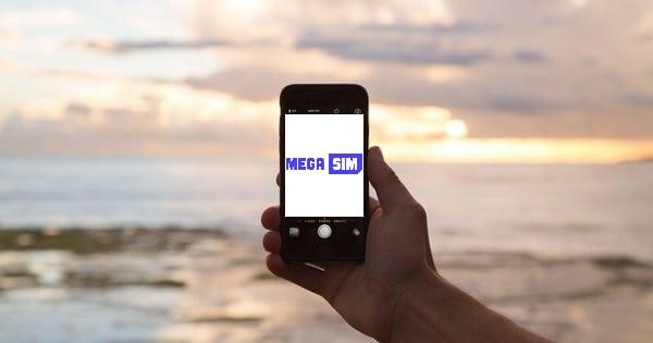 MegaSim Erfahrungen